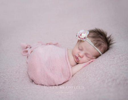 Susan Bradfield Photography